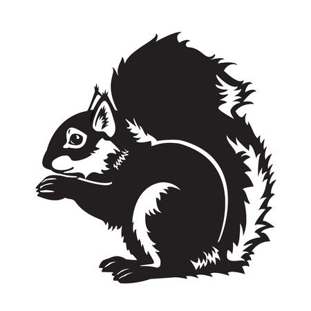 zitten Euraziatische eekhoorn, bos dier, zwart en wit vector afbeelding geïsoleerd op witte achtergrond, zijaanzicht beeld