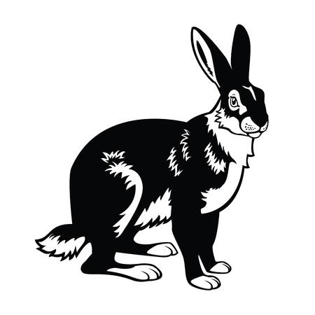 sentado Europea, los animales del bosque, liebre, negro y blanco imagen vectorial aislados en fondo blanco Ilustración de vector