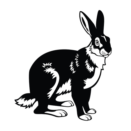 sitting European,forest animal, hare,black and white vector picture isolated on white background Vektoros illusztráció