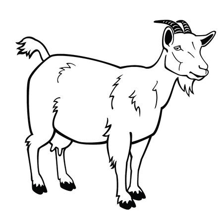 geit: staande geit, zwart en wit vector afbeelding, zijaanzicht contour foto Stock Illustratie