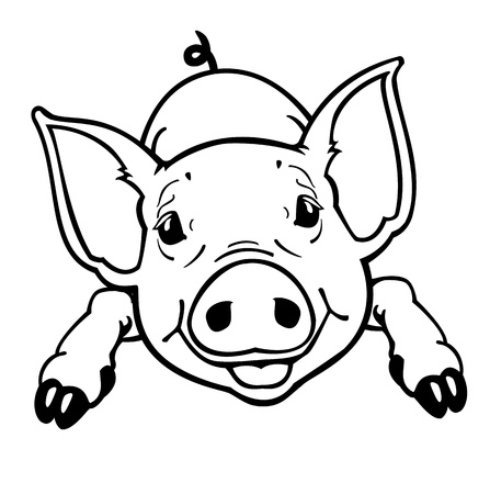 piglet,black and white vector picture isolated on white background,front view contour image