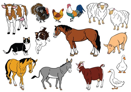 vector set of most popular farm animals isolated on white background Illustration