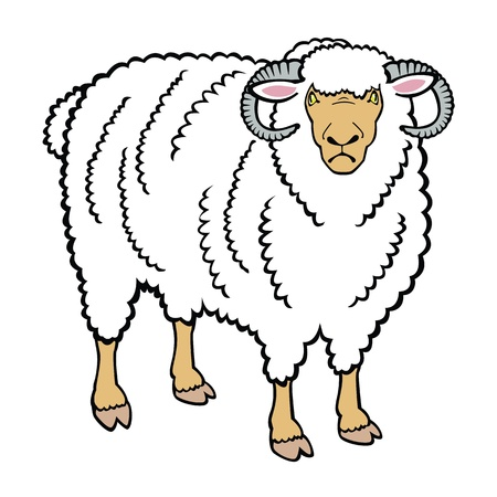 mutton: standing ram,one vector picture isolated on white background