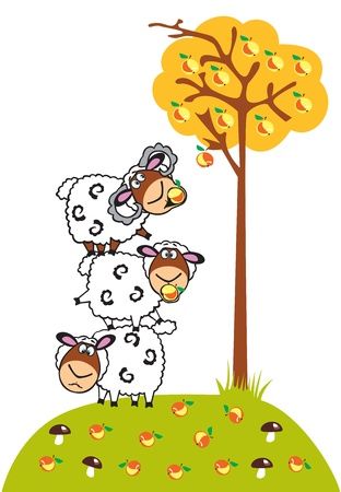 sheep cartoon: three cartoon sheep and apple tree,children vector picture isolated on white background