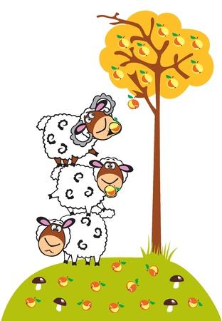 mouton cartoon: trois moutons de dessin anim� et de pommier, de l'image vectorielle enfants isol� sur fond blanc