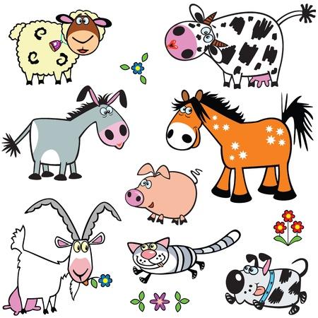 burro: establecer con los animales de dibujos animados, Vectores