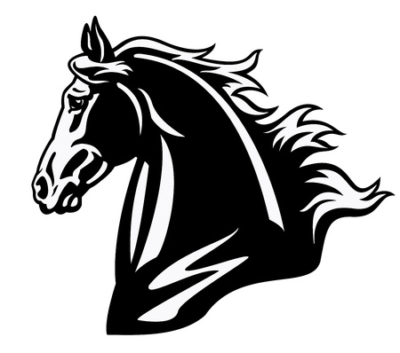 순 혈종의: 말 머리, 흑백 이미지, 흰색 배경, 문신 그림에 고립 된 측면보기 그림