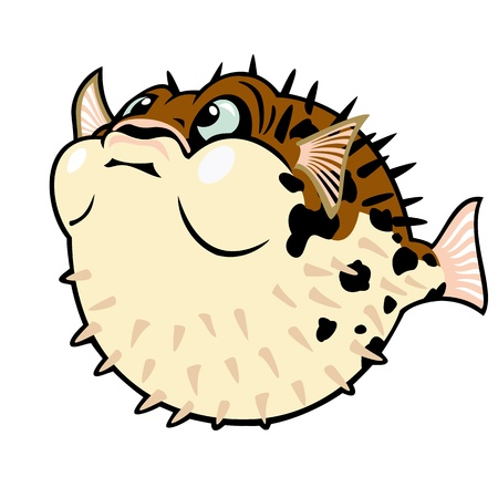 aquatic life: puffer fish