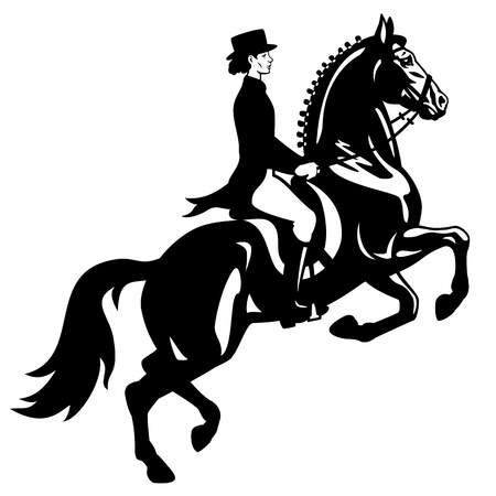 horse show: horse rider,dressage,equestrian sport,vector image isolated on white background,side view picture