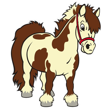 Pferde, Shetland Pony, kleine, cartoon Vektor-Bild auf wei�em Hintergrund, Kinder Illustration, Bild f�r kleine Kinder