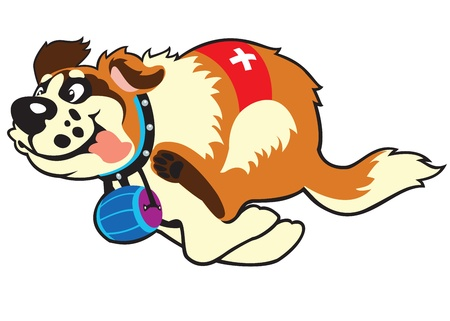swiss: dog saint bernard breed,cartoon vector picture isolated on white background,children illustration Illustration