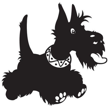 dog,scottish terrier breed,vector,black and white cartoon picture isolated on white background