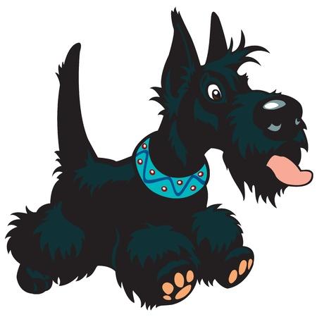 perro, raza scottish terrier, vector de dibujos animados imagen aislada en el fondo blanco