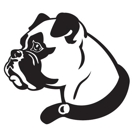 perro boxer: cabeza de perro, raza boxer, vector imagen en blanco y negro aislado en blanco baclground, imagen de la cara vista