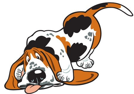 hound: basset hound,cartoon dog,vector picture isolated on white background Illustration