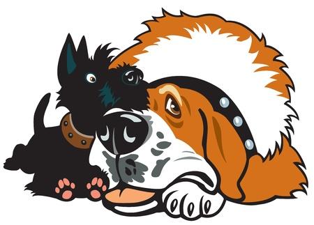 grande e piccolo: cani, terrier scozzese e santa amicizia bernard, immagine cartone animato, immagine vettoriale isolato su sfondo bianco