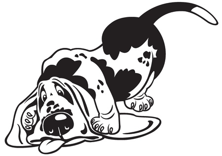 dog,basset hound,black and white cartoon picture Vector