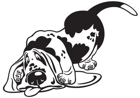 basset hound: perro, basset hound, imagen de dibujos animados en blanco y negro