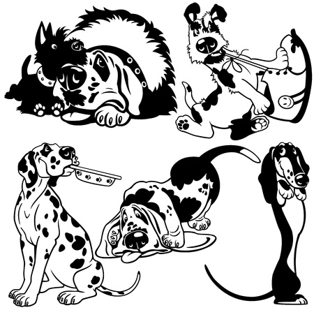 set with cartoon dogs,difference breeds,black white  pictures isolated on white background Vector
