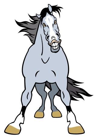carita feliz caricatura: frente caballo de vista, imagen de dibujos animados aislado en el fondo blanco