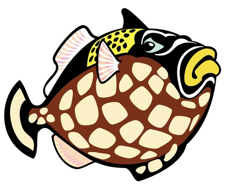 triggerfish: clown trigger fish,cartoon picture isolated on white background,vector illustration