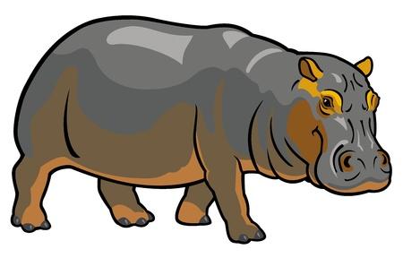 nijlpaard amphibius, afrika dier, zijaanzicht foto op een witte achtergrond Stock Illustratie