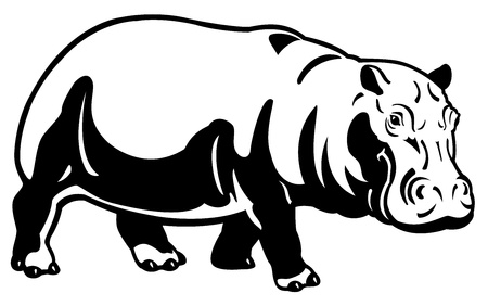 hippopotamus amphibius,africa animal,black white image,side view illustration Vector
