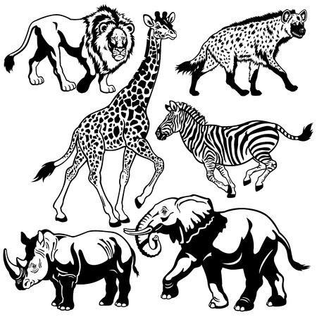 animales del zoo: establecer con los animales áfrica, animales de la sabana, negros e imágenes blancas Vectores