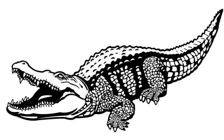 crocodile: cocodrilo del Nilo, Crocodylus niloticus, animal salvaje de África, imagen en blanco y negro, ilustración en vista lateral