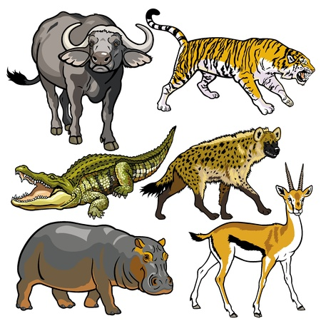 herbivore: set with african animals,wild beasts of africa,pictures isolated on white background