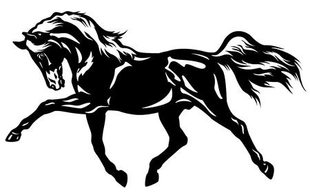 drafje: paard zijaanzicht zwart-wit foto