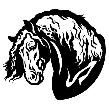 draft horse: draft horse head black and white illustration Illustration
