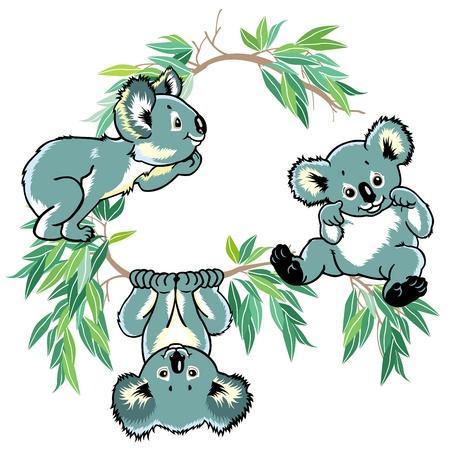 koala bear: cartoon koala bears for little kids, children illustration isolated on white background Illustration
