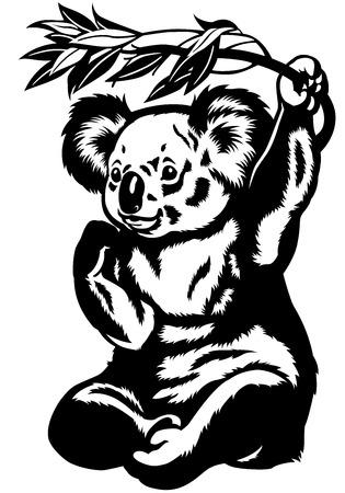 koala bear: koala bear black and white picture