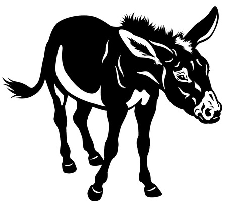 donkey black and white illustration
