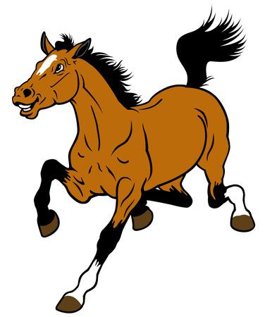carita feliz caricatura: caballo de la historieta aislado en el fondo blanco