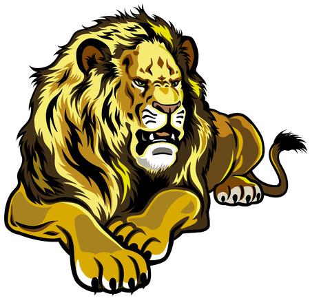 Lion vue de face illustration isolé sur fond blanc Banque d'images - 23013776