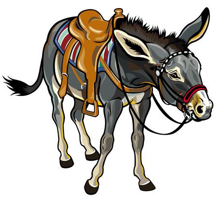 saddle: donkey with saddle illustration isolated on white background