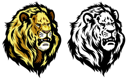 ライオンの頭の白い背景で隔離の図  イラスト・ベクター素材
