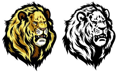 undomesticated cat: lion head illustration isolated on white background Illustration