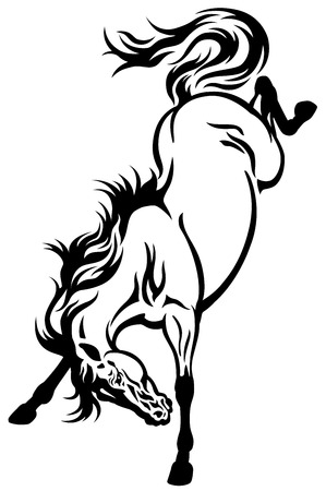 bucking horse: bucking horse tettoo black and white illustration Illustration