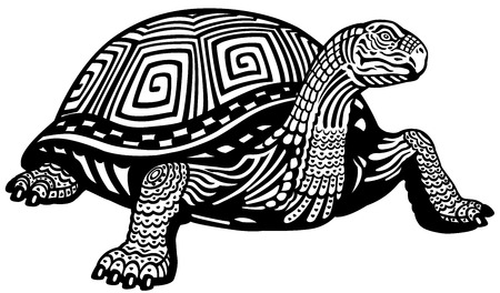 land turtle: turtle black and white illustration