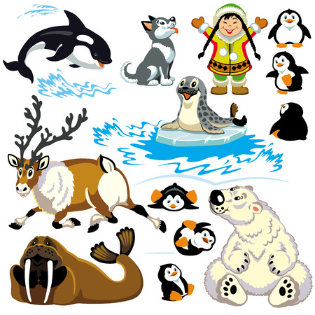 set with cartoon animals of arctic Isolated pictures for little kids  Illustration