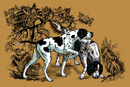 hunting dogs in forest, english pointer and setter breeds,illustration  Illustration