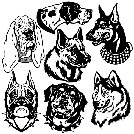 boxers: set with dogs heads icons  Difference breeds  Black and white images