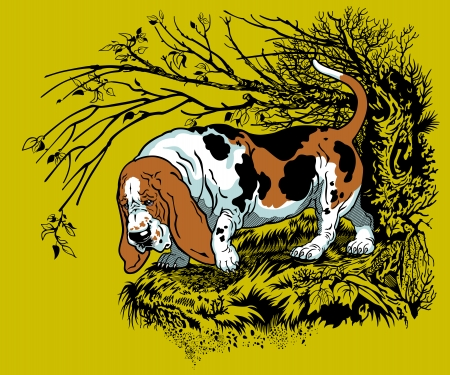 bast: hunting dog in forest, bast hound breed, graphic style illustration