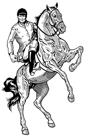 rearing: horse rider, equestrian sport, black and white illustration