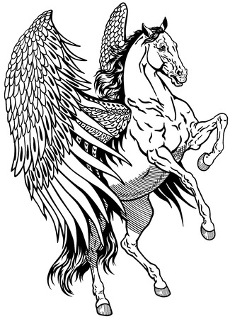 creature of fantasy: white pegasus, mythological winged horse, black and white illustration