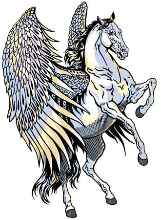 pegaso: pegaso blanco, caballo alado mitológico, ejemplo aislado en fondo blanco