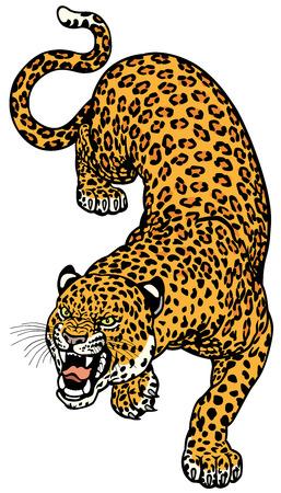 panthera pardus: leopard tattoo illustration isolated on white background  Illustration